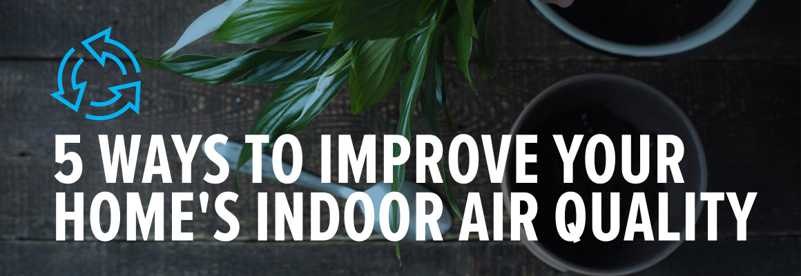 5 Ways to Improve Your Home's Indoor Air Quality